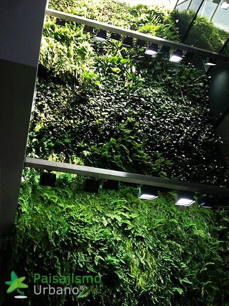 img-jardin-vertical-interior-oficinas-alicante-14