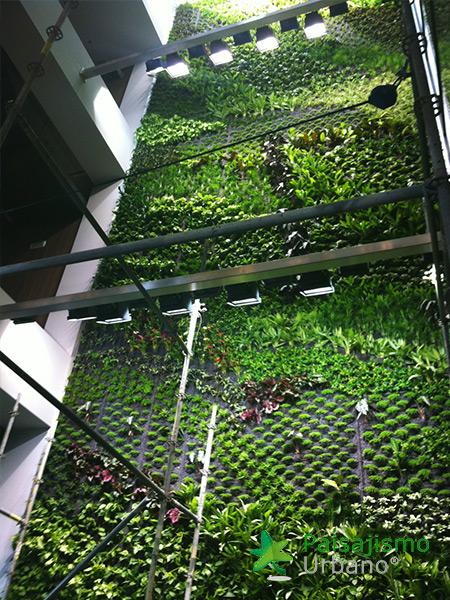 img-jardin-vertical-interior-oficinas-alicante-5