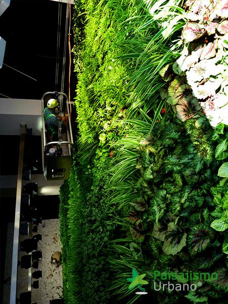 img-jardin-vertical-interior-oficinas-alicante-7