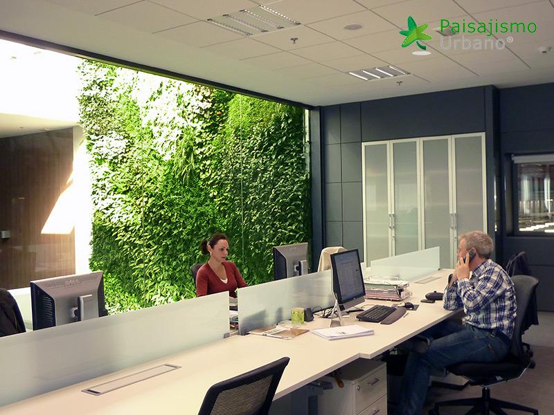 img-jardin-vertical-interior-oficinas-alicante-9