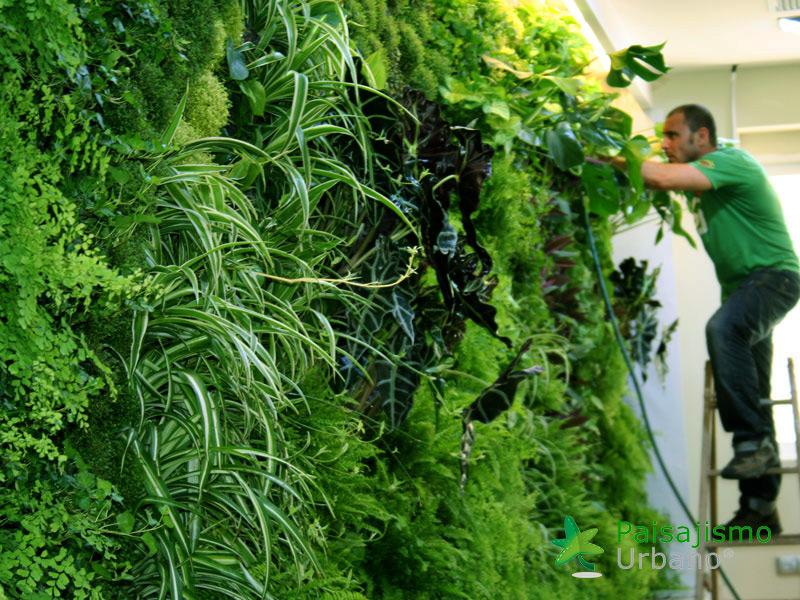 img-jardin-vertical-restaurante-els-vents-alicante-3