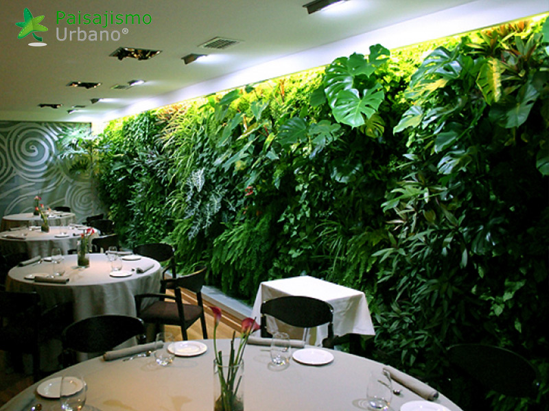 img-jardin-vertical-restaurante-els-vents-alicante-8