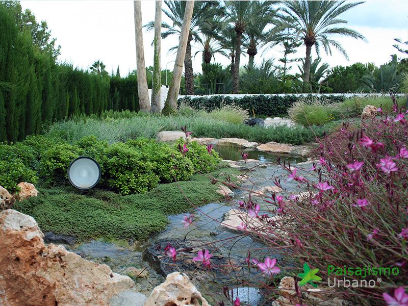 img-jardines-xerojardin-elche-10