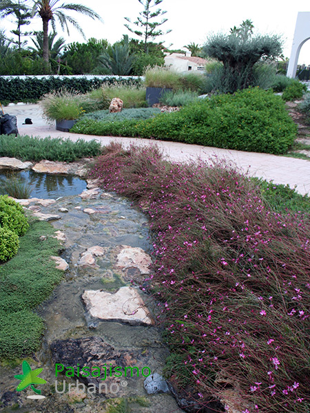 img-jardines-xerojardin-elche-6