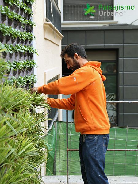 img-jardin-vertical-calahorra-elche-10