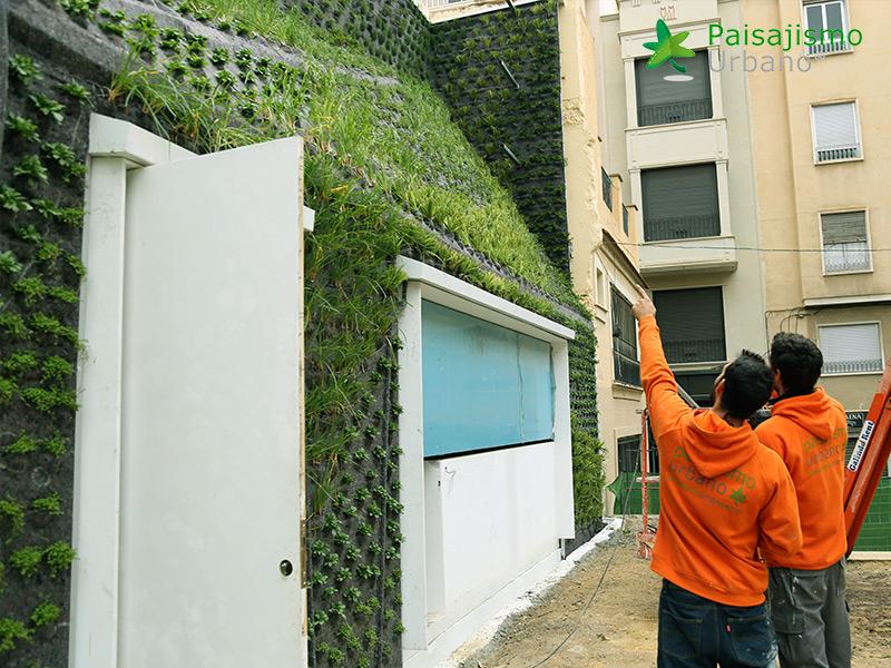 img-jardin-vertical-calahorra-elche-11