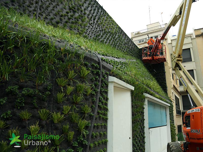 img-jardin-vertical-calahorra-elche-12