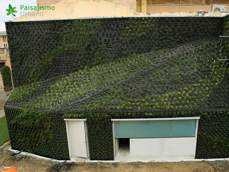 img-jardin-vertical-calahorra-elche-14