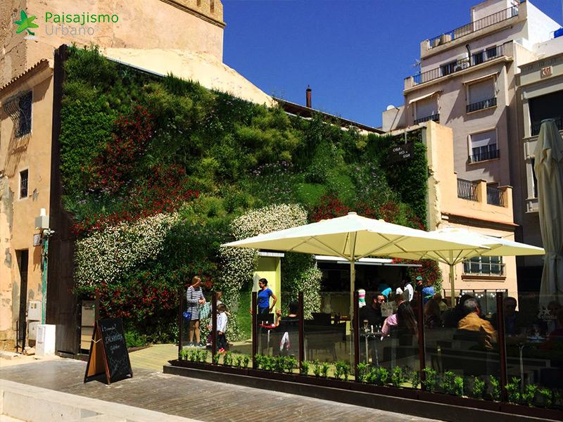 img-jardin-vertical-calahorra-elche-16