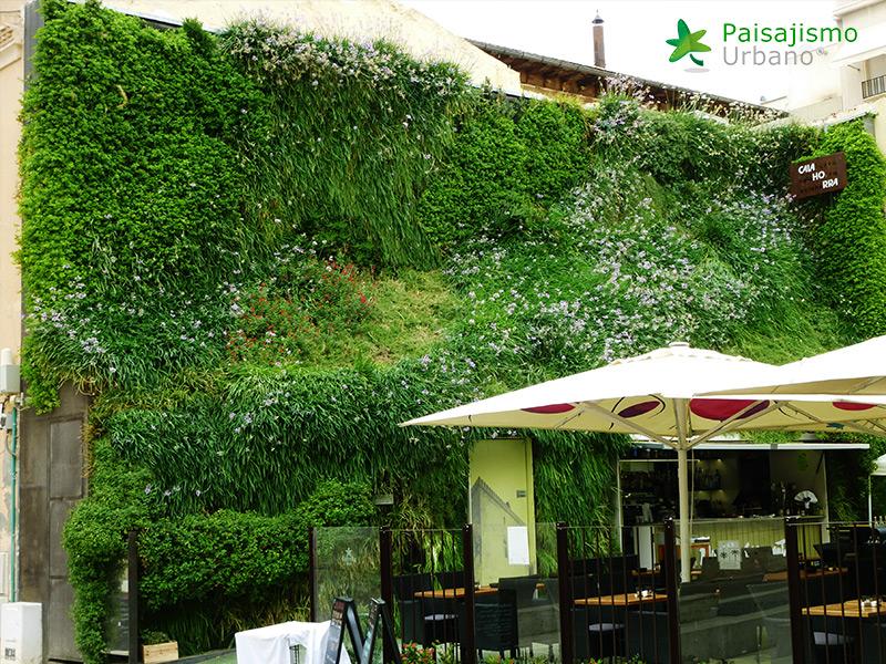 img-jardin-vertical-calahorra-elche-18