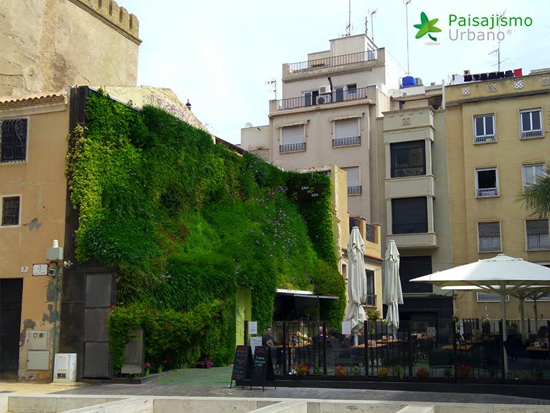 img-jardin-vertical-calahorra-elche-19