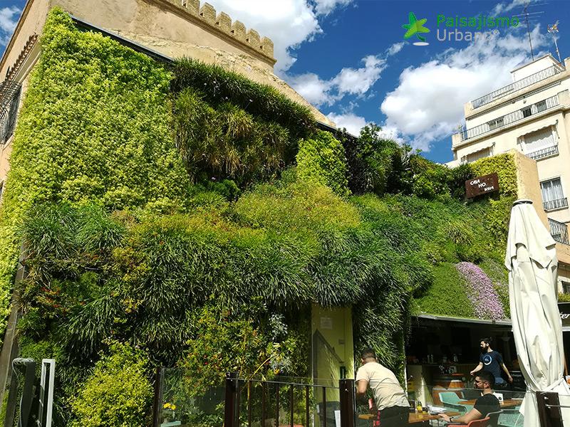 img-jardin-vertical-calahorra-elche-21