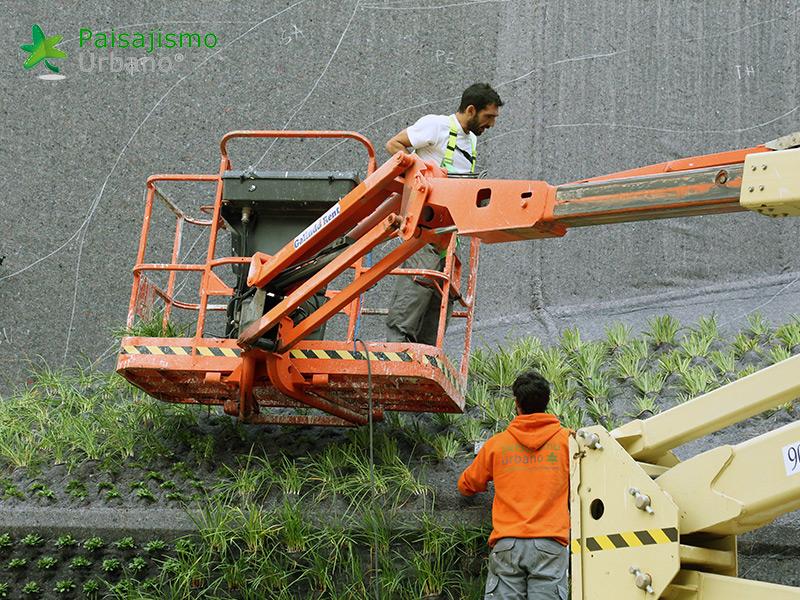 img-jardin-vertical-calahorra-elche-9