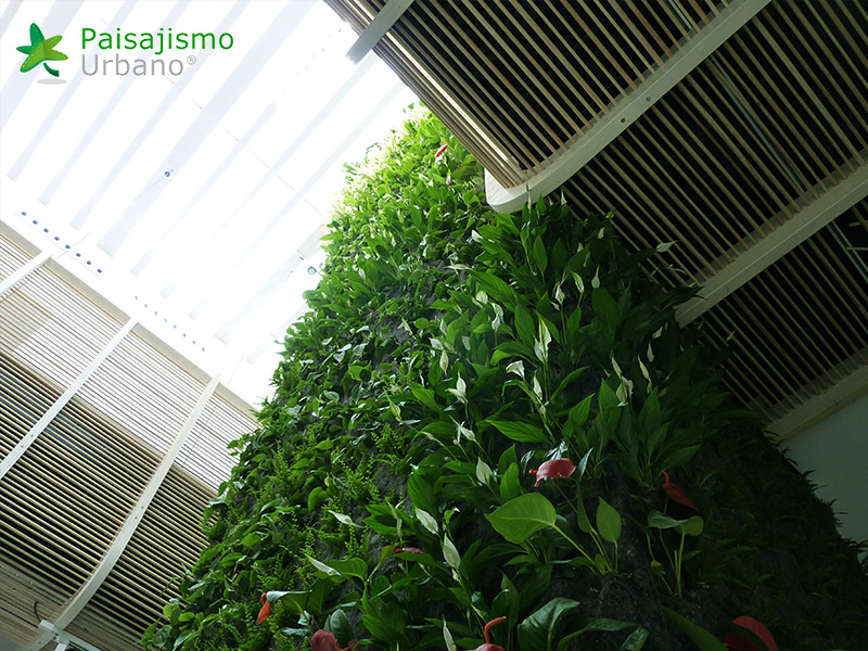 img-jardin-vertical-hotel-gatzara-ibiza-8