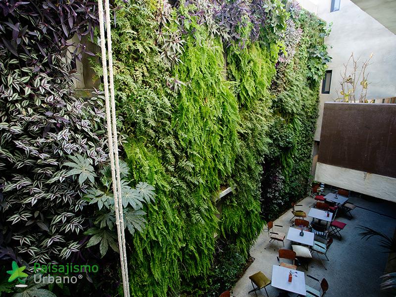 img-jardin-vertical-hotel-kook-tarifa-16