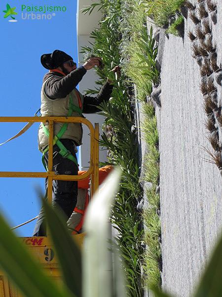 img-jardin-vertical-fraga-huesca-asofrube-10