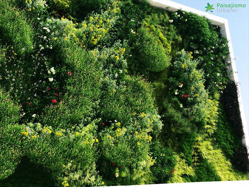 img-jardin-vertical-fraga-huesca-asofrube-14