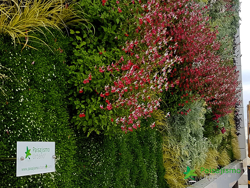 img-jardin-vertical-fraga-huesca-asofrube-16