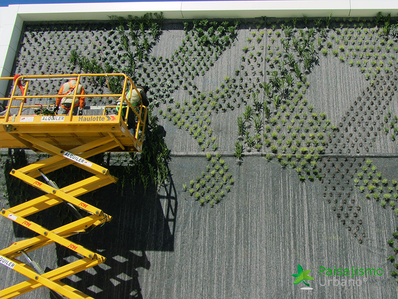 img-jardin-vertical-fraga-huesca-asofrube-6