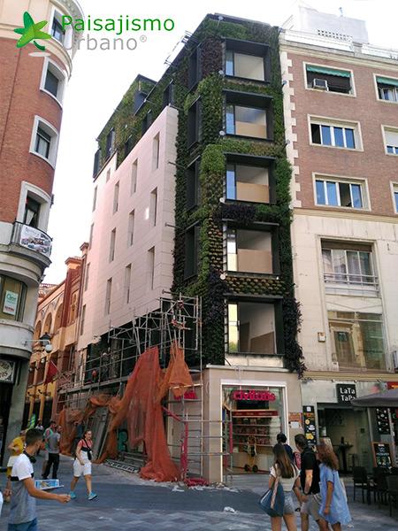 img-jardin-vertical-calle-montera-madrid-21