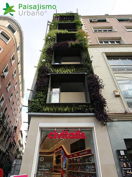 img-jardin-vertical-calle-montera-madrid-24