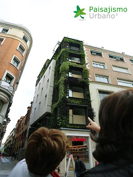img-jardin-vertical-calle-montera-madrid-25
