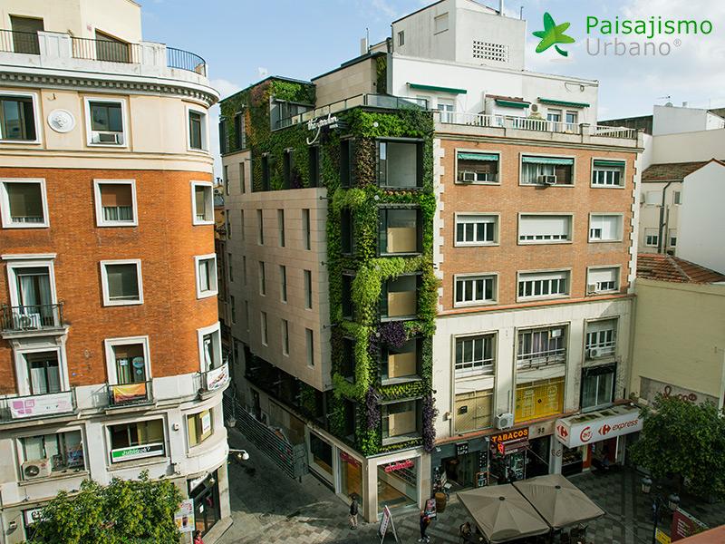 img-jardin-vertical-calle-montera-madrid-29
