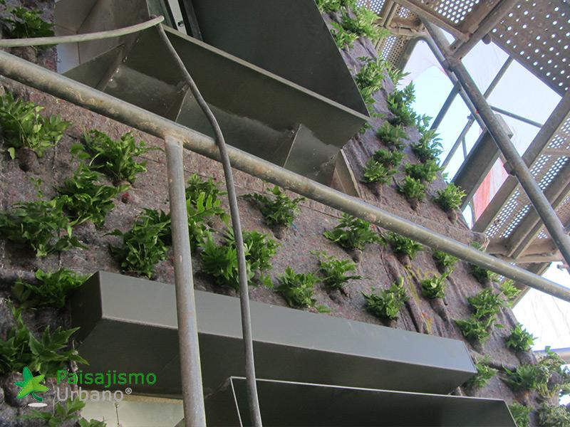 img-jardin-vertical-calle-montera-madrid-7