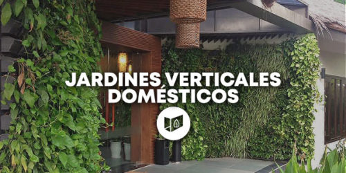 Jardines Verticales Domésticos
