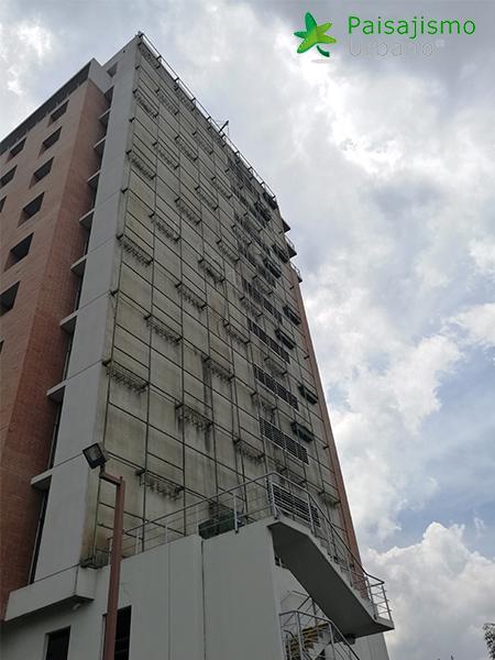 img-jardines-verticales-guatemala-edificio-crece-1