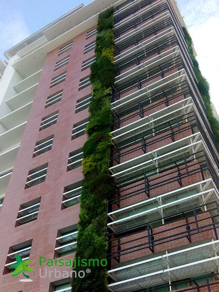 img-jardines-verticales-guatemala-edificio-crece-10