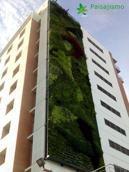 img-jardines-verticales-guatemala-edificio-crece-11