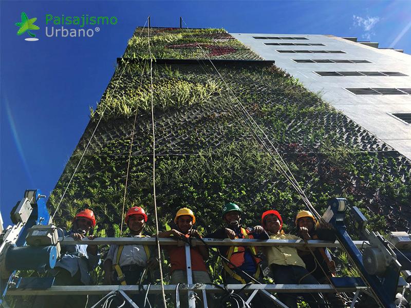 img-jardines-verticales-guatemala-edificio-crece-6