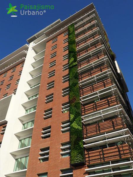 img-jardines-verticales-guatemala-edificio-crece-8