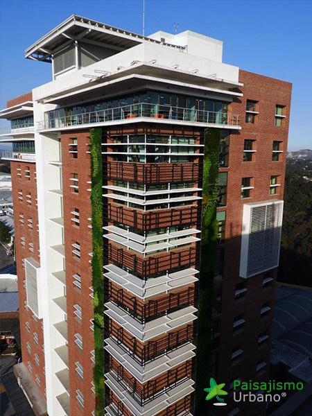 img-jardines-verticales-guatemala-edificio-crece-9
