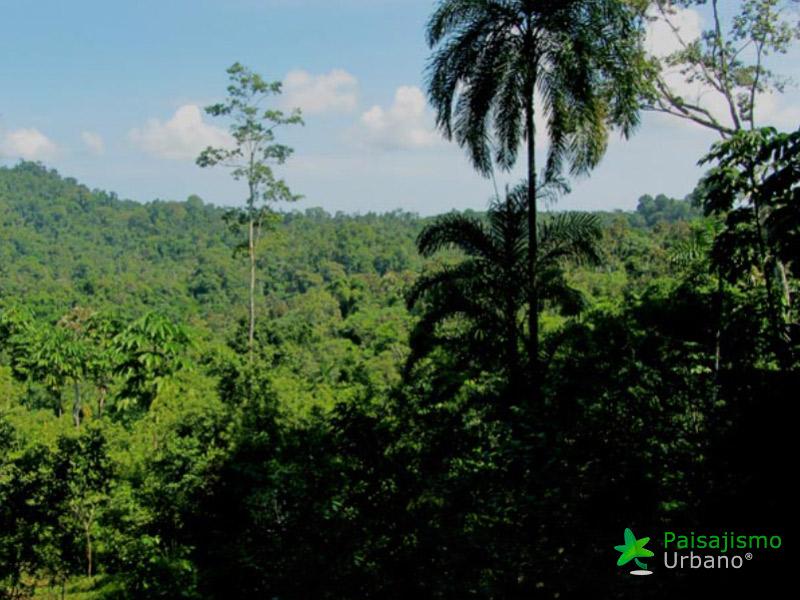 CostaRica-reducida43