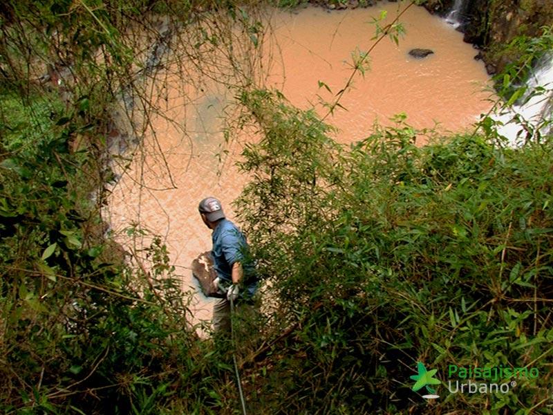 Selva-Misiones-reducida17