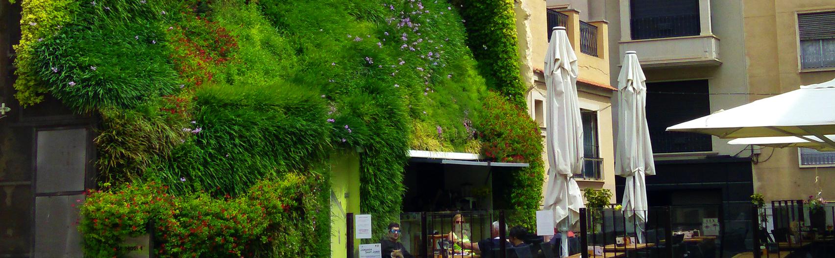 Proyecto jardín vertical Calahorra – Elche. Paisajismo Urbano, 2014