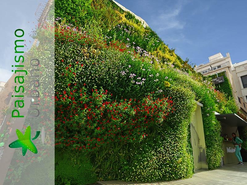 categoria-jardin-vertical-calahorra-elche