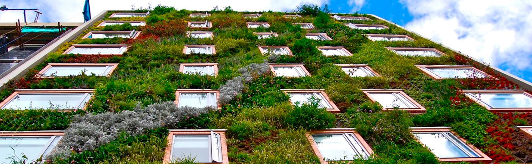 Proyecto jardín vertical Hotel B3- Bogotá. Paisajismo Urbano 2013