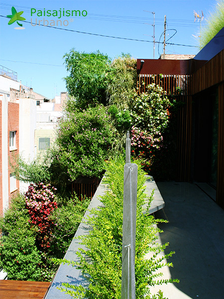 img-azotea-verde-edificio-murcia-12