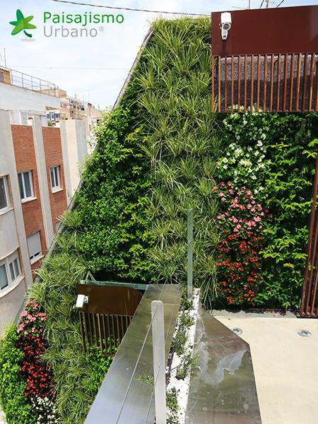 img-azotea-verde-edificio-murcia-6