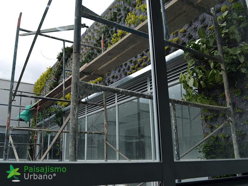 img-fachada-vegetal-centro-medico-compensar-colombia-3