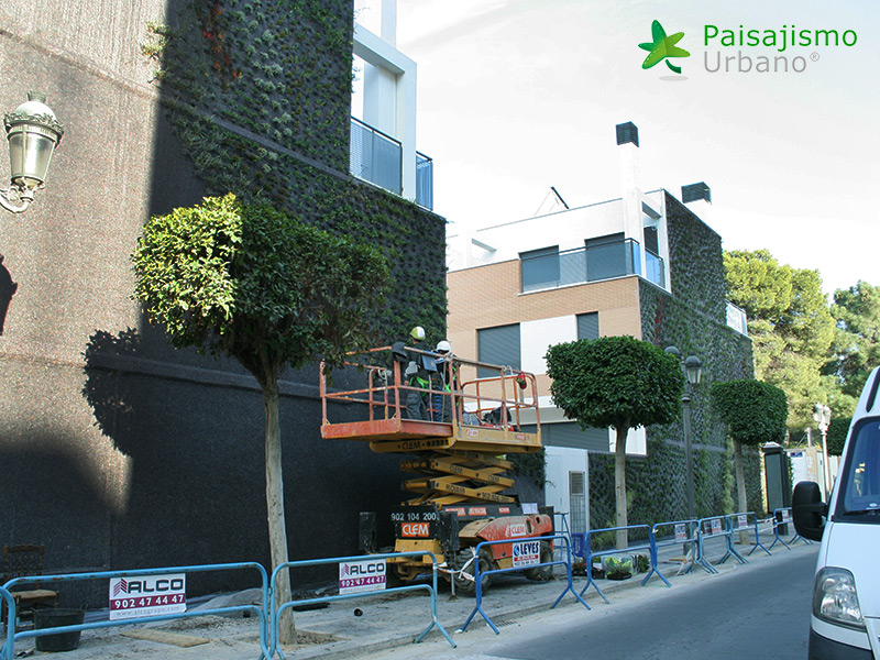 img-fachada-vegetal-paterna-valencia-10