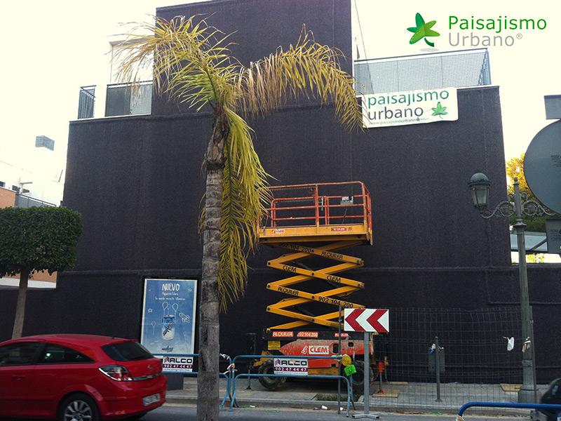 img-fachada-vegetal-paterna-valencia-7