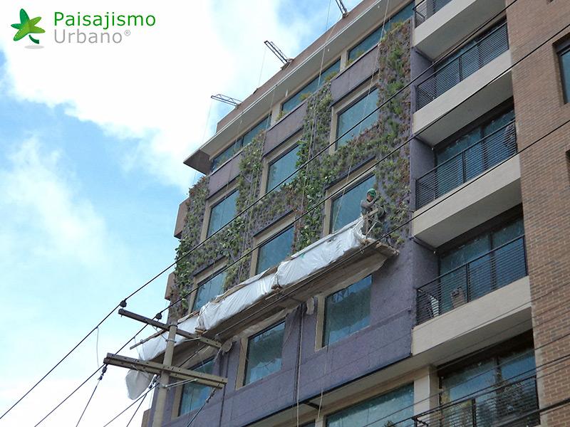 img-fachada-verde-caminos-de-bella-suiza-colombia-6