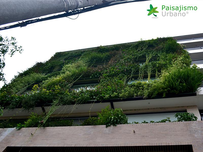 img-fachada-verde-caminos-de-bella-suiza-colombia-9