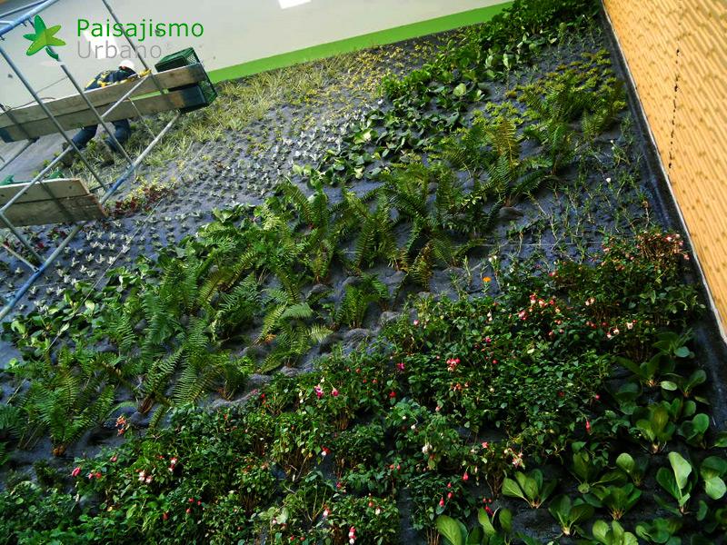 img-fachada-verde-centro-comercial-armenia-colombia-10