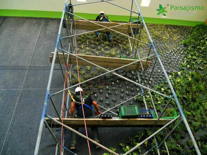 img-fachada-verde-centro-comercial-armenia-colombia-5