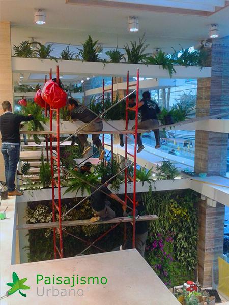 img-jardin-vertical-almacen-seven-seven-cali-colombia-3